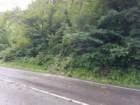 Maltempo, chiusa la strada tra Germignaga e Mesenzana. Sul posto i tecnici ANAS e i Vigili del Fuoco (Foto dal profilo Facebook del sindaco Marco Fazio)