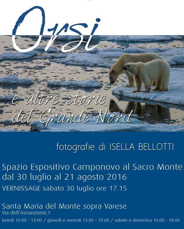 """""""Orsi e altre storie del Grande Nord"""", sabato il vernissage della luinese Isella Belotti al Sacro Monte di Varese"""