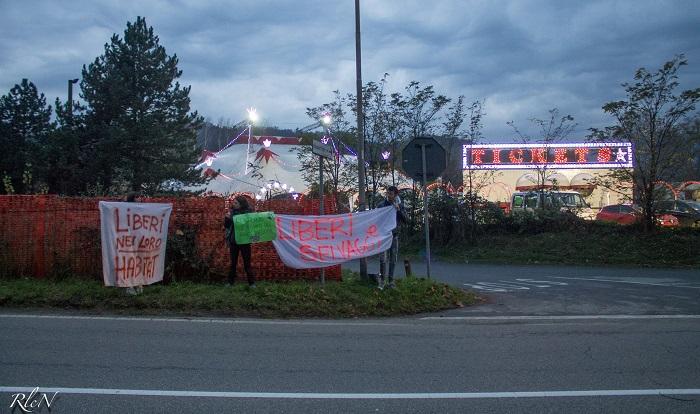 """Luino, in protesta contro il circo: """"No allo sfruttamento degli animali"""" (Foto © RlcN)"""