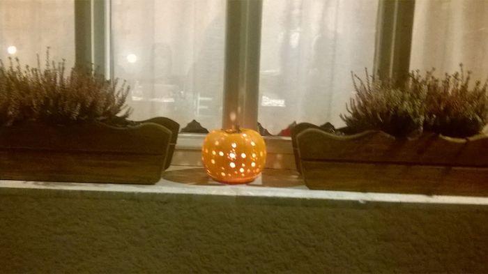 """Oggi """"Il Grotto del Sorriso"""" festeggia Halloween con l'Aperizucca. Aperto anche domani sera"""