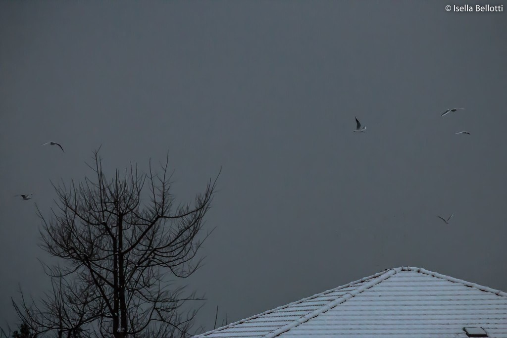 Il cielo di Luino, dopo la nevicata di ieri