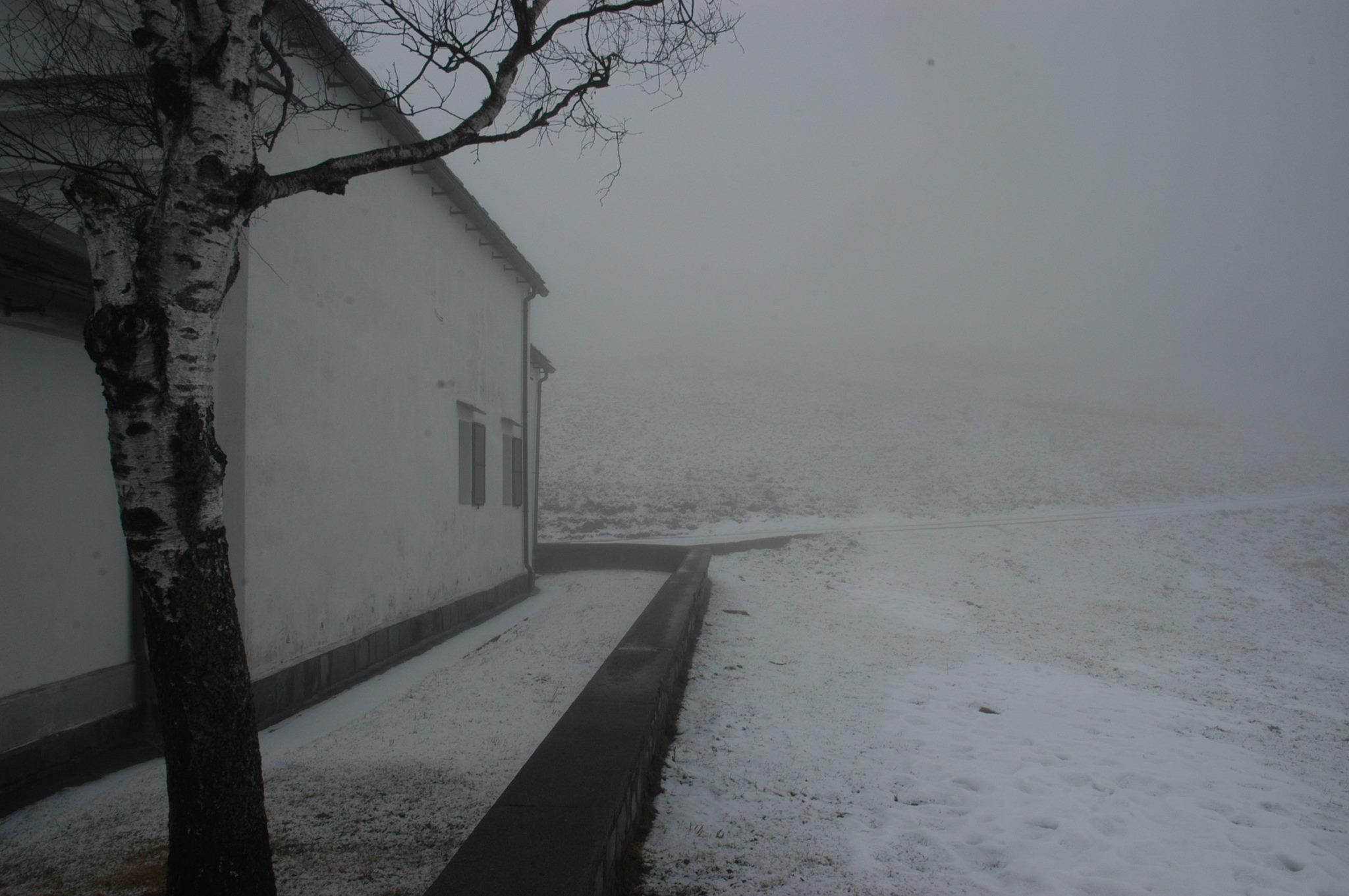 Nudo nelle foto di neve