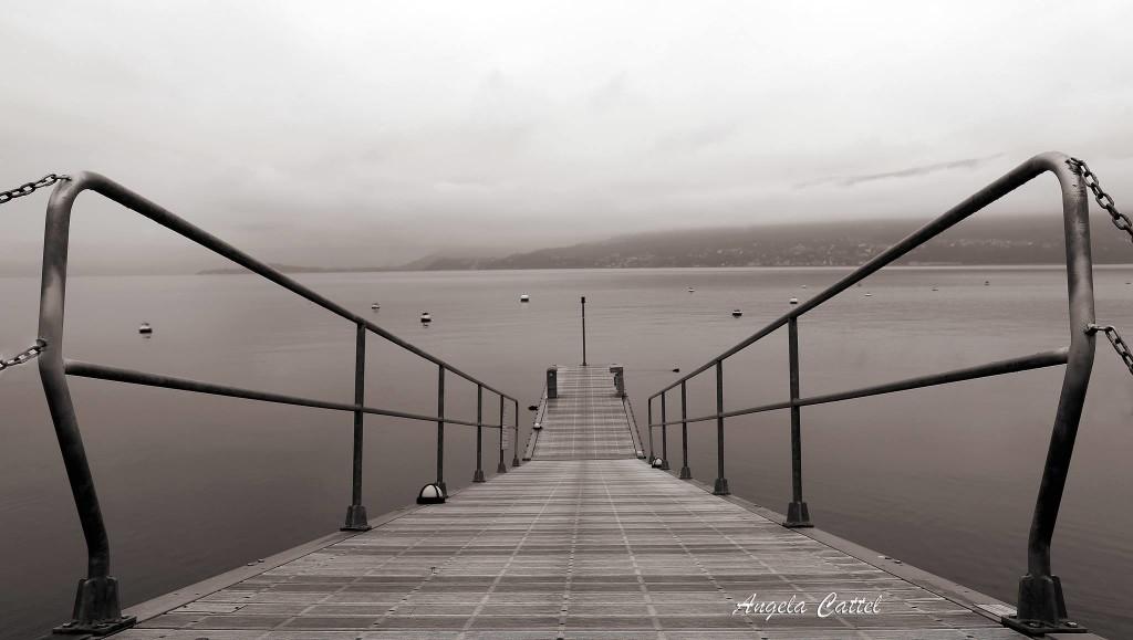 Buongiorno con la foto del giorno di Angela Cattel. In che punto del lago è stata scattata?