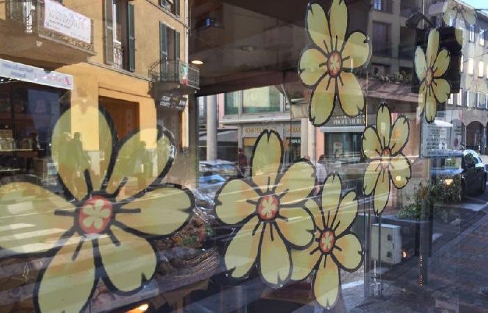 """Vetrine """"in fiore"""" a Lavena Ponte Tresa grazie alla collaborazione tra Proloco e commercianti"""