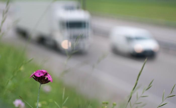 Inquinamento, in Lombardia superata la soglia di allarme per l'ozono