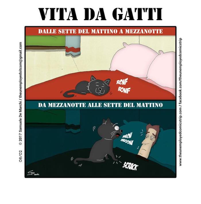 The Unemployed - Vita da gatti
