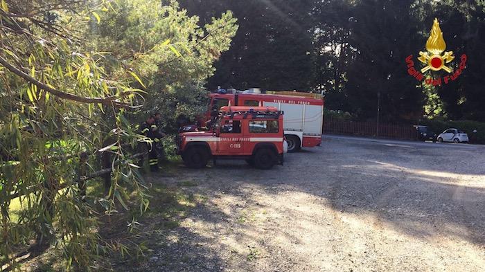 Una fungiatt si perde nei boschi di Montegrino, al via le ricerche