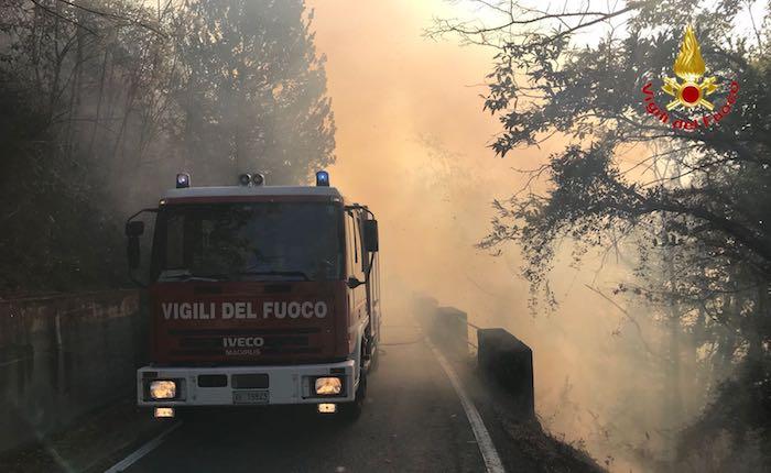 A fuochi boschi tra Pino e Tronzano, al lavoro i Vigili del Fuoco