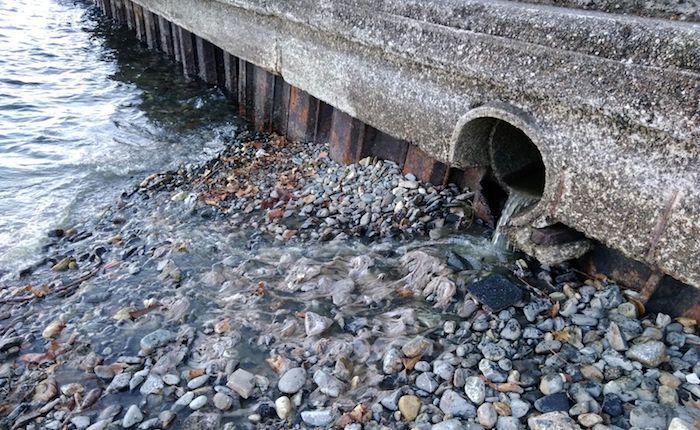 Luino, ancora uno sversamento di acque sporche sulle rive del Porto Nuovo