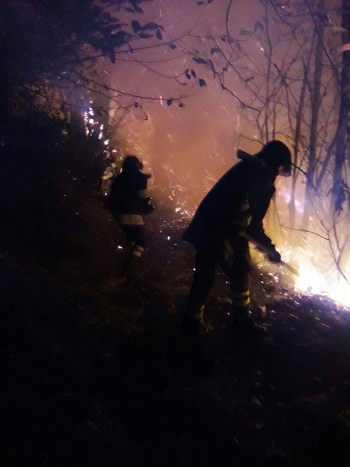 In fiamme un bosco di Valganna, il sindaco Jardini: