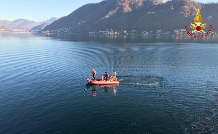 Un capriolo finisce nel lago Ceresio a Lavena Ponte Tresa