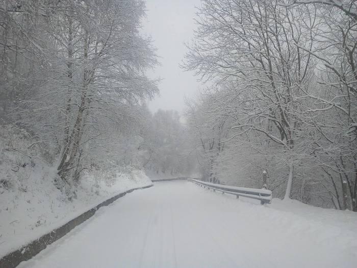 La neve trasforma il paesaggio, in Forcora caduti 20cm circa. Sulle strade in azione gli spalaneve