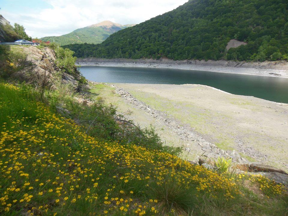 Il fascino del lago Delio in fiore, la foto è di Candido Quatrale