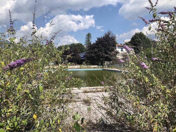 https://www.luinonotizie.it/2017/07/27/domani-sabato-montegrino-arriva-la-festa-del-pulaster-unoccasione-stare-insieme/136458