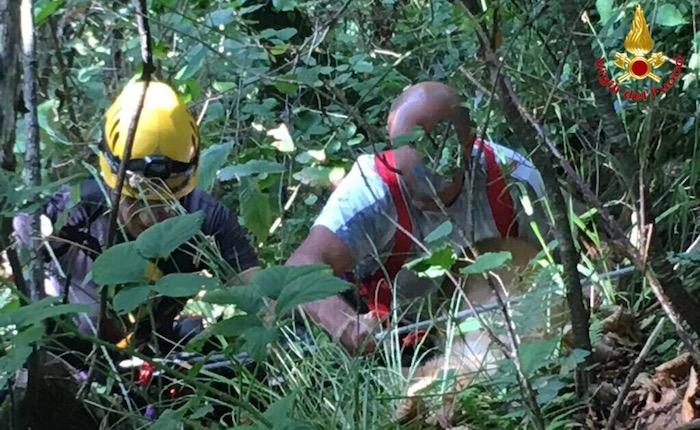 Cagnolino cade in un crepaccio a Cadegliano, i vigili del fuoco lo salvano insieme a due uomini