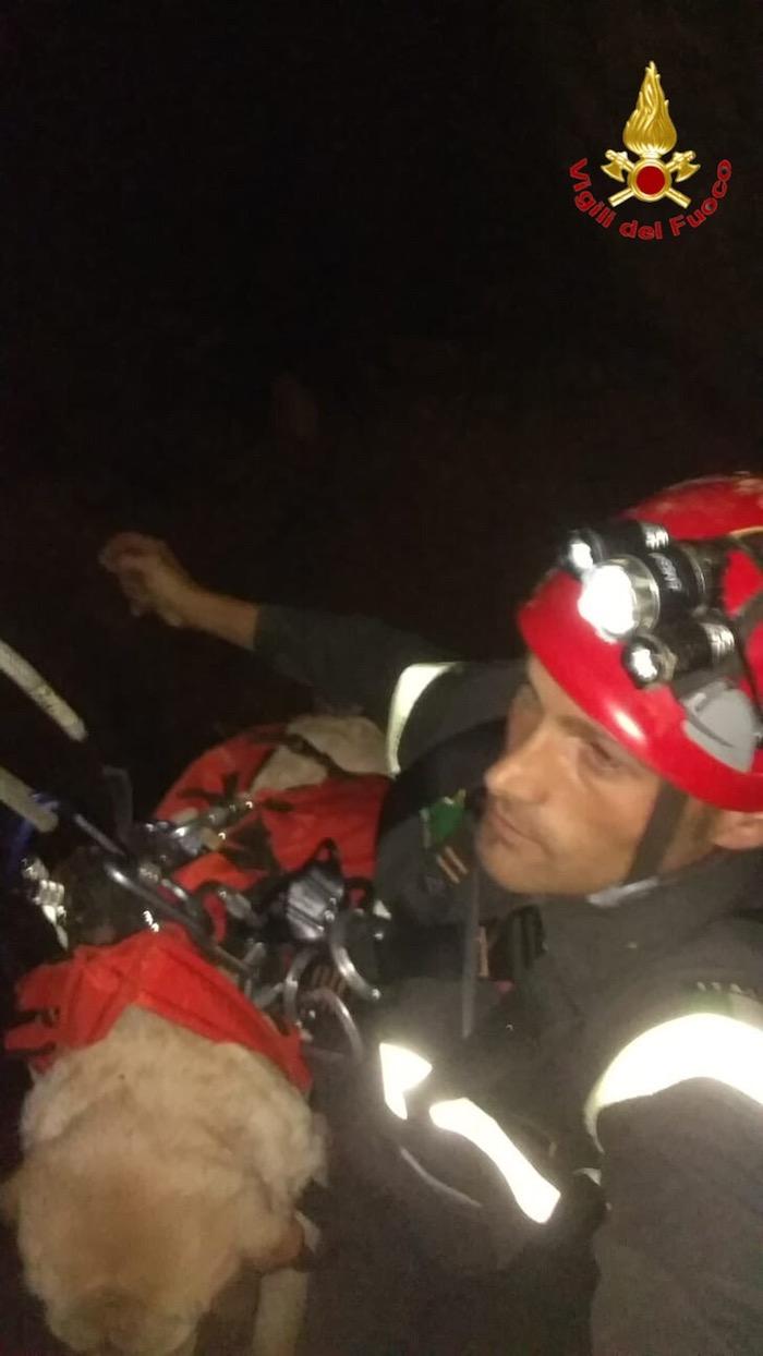 Valganna, labrador precipita in una grotta per 30 metri. I vigili del fuoco gli salvano la vita