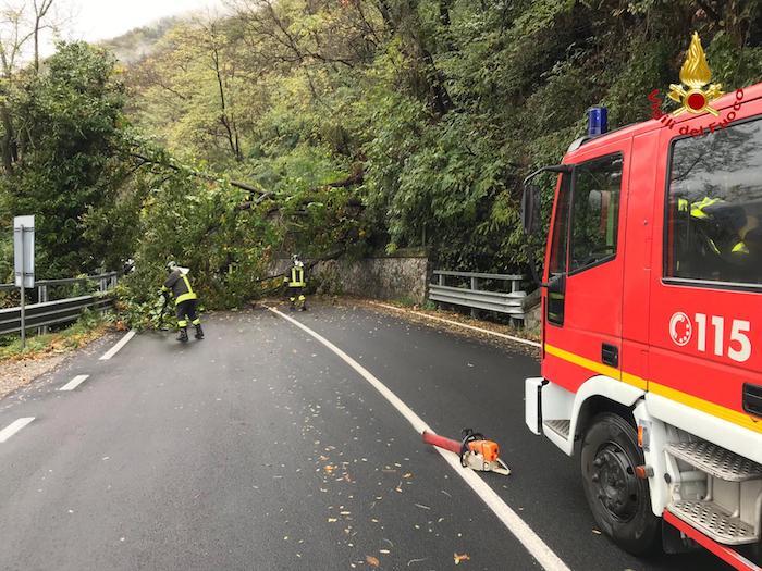 Maltempo: alberi sulla statale tra Maccagno e Zenna, strada bloccata