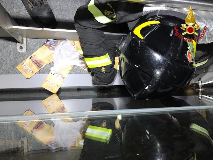 Gattino in pericolo a Lavena Ponte Tresa, i vigili del fuoco gli salvano la vita