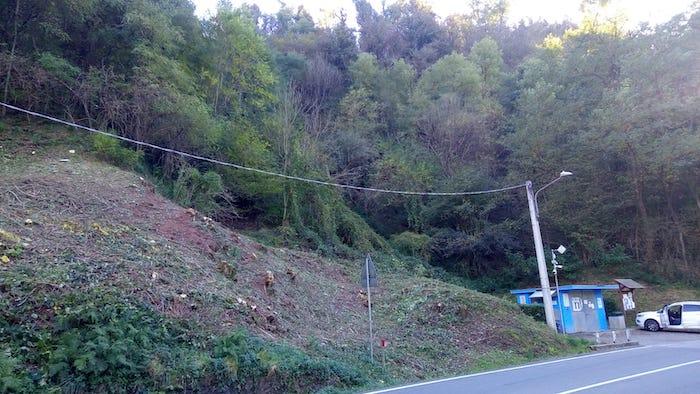 Cremenaga previene i danni del maltempo, importante progetto sugli alberi a bordo strada
