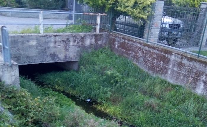 Porto Ceresio, da Regione 70mila euro per la pulizia dei torrenti da alberi e arbusti
