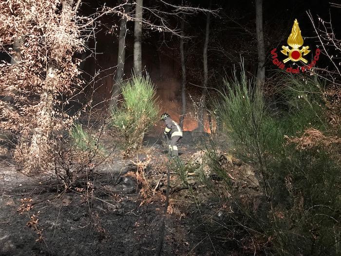 Vasto incendio nel bosco tra Montegrino e Cugliate