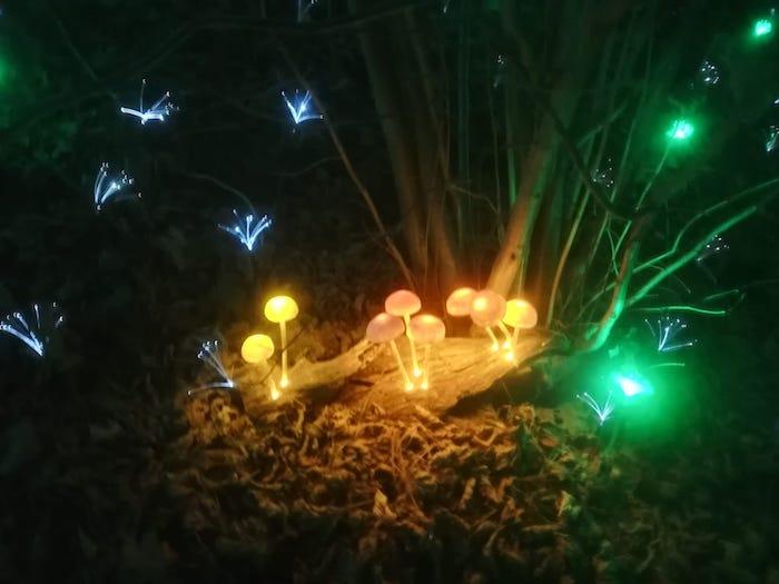 Lucine di Leggiuno, quella magica atmosfera fabiesca del Natale che conquista i visitatori