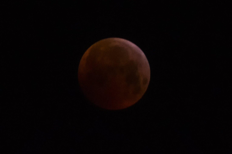 Super Luna rossa, l'eclissi vista da Luino: ecco le foto di Alessandro Bordin