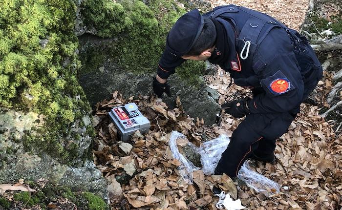 Droga nei boschi dell'Alto Varesotto: c'è di tutto tra la Valcuvia, la Valmarchirolo e la Valganna