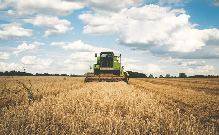 Agroalimentare in Lombardia: produzione in aumento ...
