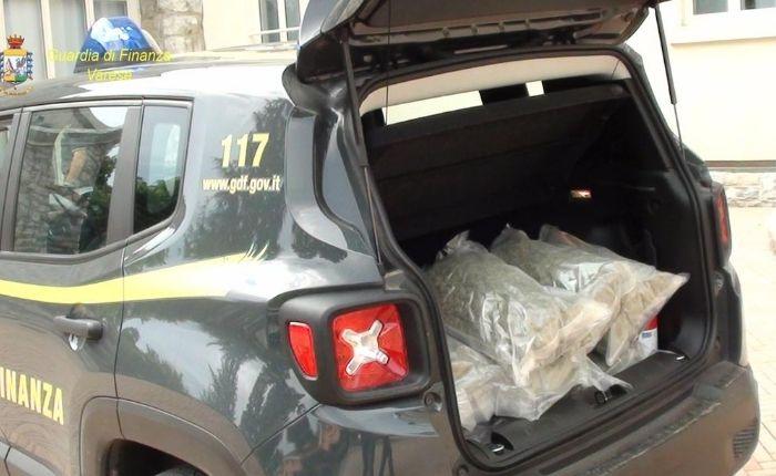 Sequestrati 53kg di marijuana nel Varesotto, arrestato un uomo