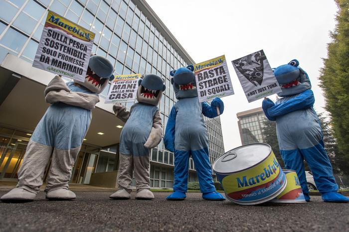 Milano – In azione alla sede di Mareblu, tra i principali marchi di tonno in scatola in Italia,per direbasta alle tecniche di pesca che distruggono i nostri mari. ©Lorenzo Moscia/Greenpeace
