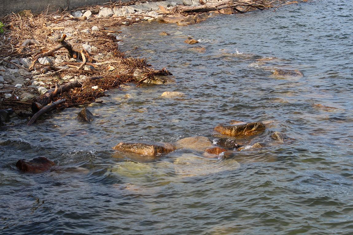 Luino, trovato il corpo senza vita di una donna al Parco a Lago