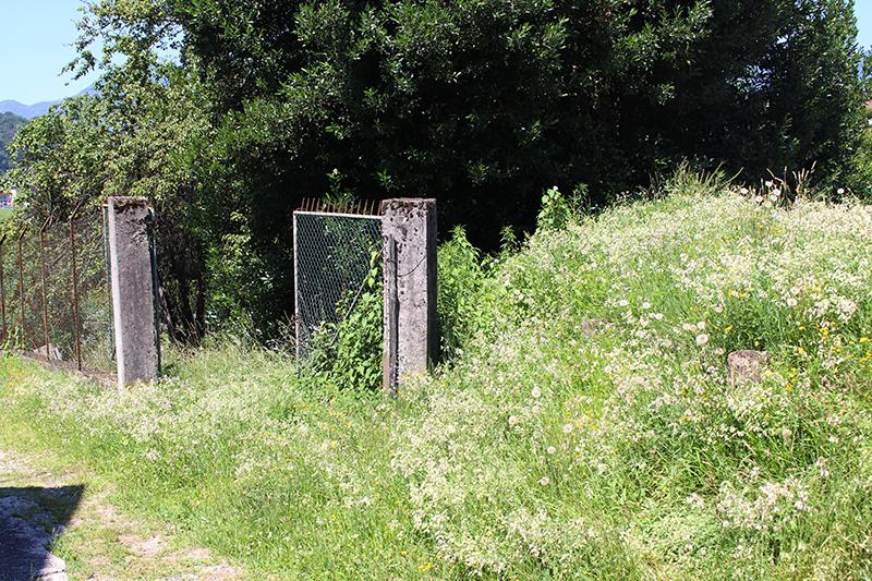 """Voldomino, """"Da sei anni sempre la stessa storia, l'erba alta davanti casa è inaccettabile"""""""