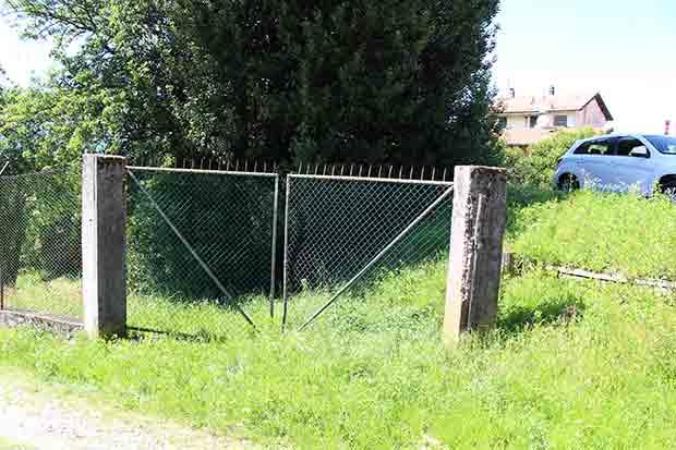 """Luino, una cittadina di via Gorizia: """"Non posso far uscire le mie nipoti in giardino a causa delle bisce. Dov'è il Comune"""""""