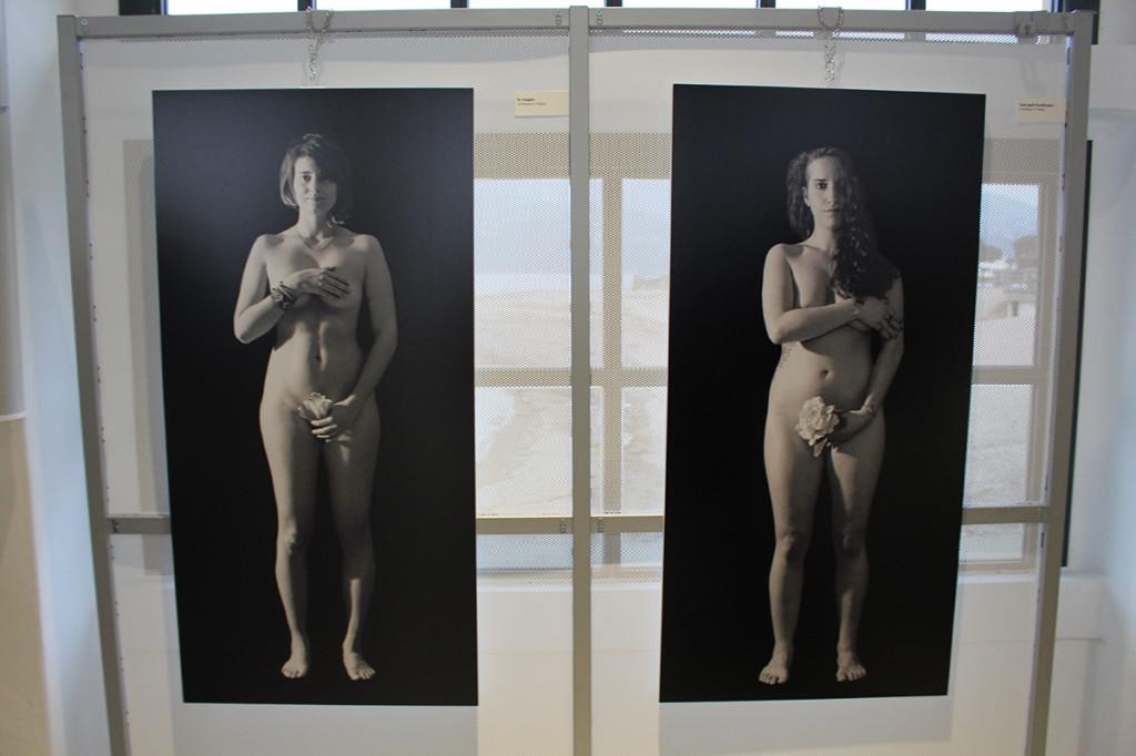 """Germignaga: presentata """"Io sono. Questo fiore"""", le donne al centro della mostra di Raffaella G. Fidanza"""