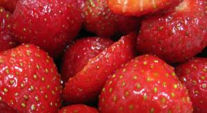 Le fragole favetta di Terracina (cucinasms.com)