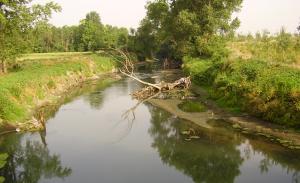 Il fiume Labro, nella periferia milanese (digilander.libero.it)