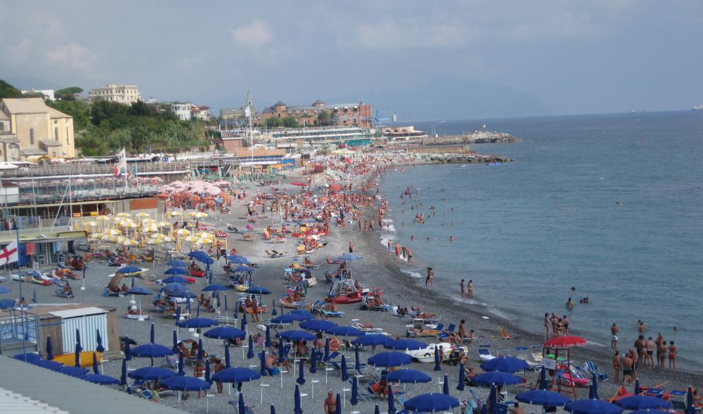 In aumento il numero di stranieri che decidono di fare le for Numero dei parlamentari in italia