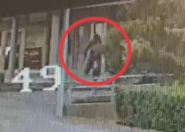 Molinazzo rapina tentata video