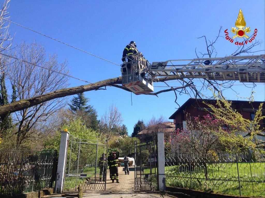 Gli interventi dei Vigili del Fuoco a causa del forte vento