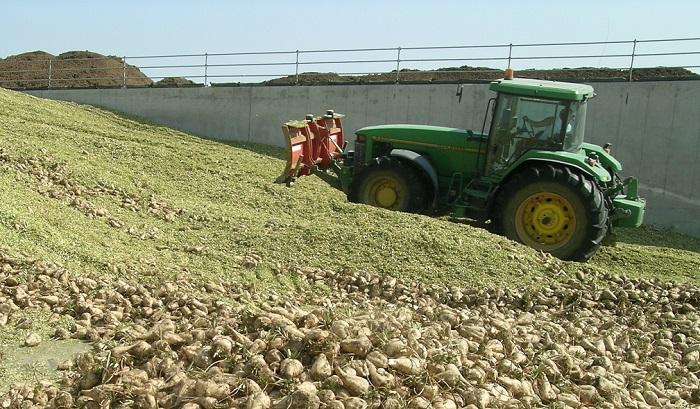 Biogas, Italia quarta al mondo per produzione: un modello di sostenibilità