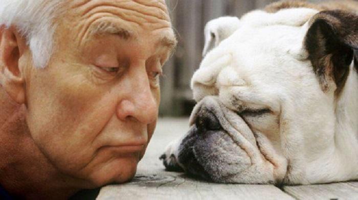 I cani somigliano al padrone e non solo, ne rispecchiano anche le emozioni