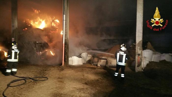 Induno Olona: le fiamme devastano un'azienda agricola, tratti in salva una cinquantina di bovini