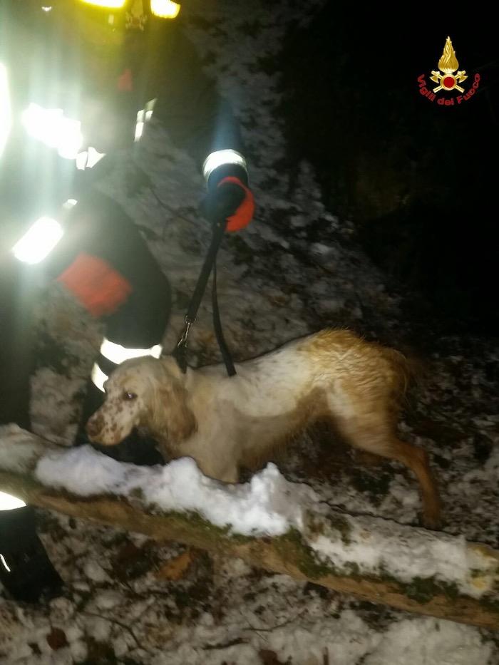 Lavena Ponte Tresa: i Vigili del Fuoco salvano un cane, caduto in un pozzo profondo