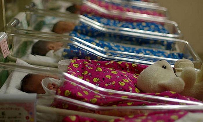 La cicogna preferisce andare altrove, in Italia sempre meno nascite