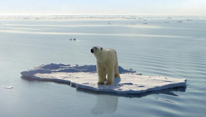 Riscaldamento globale, minacciati quattro quinti degli oceani: conseguenze anche sul clima
