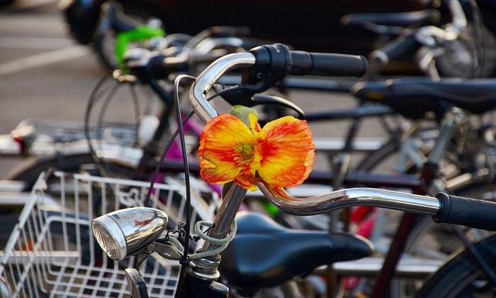 """Andare al lavoro in bici riduce il rischio di malattie cardiache. I tragitti """"attivi"""" migliorano la salute"""