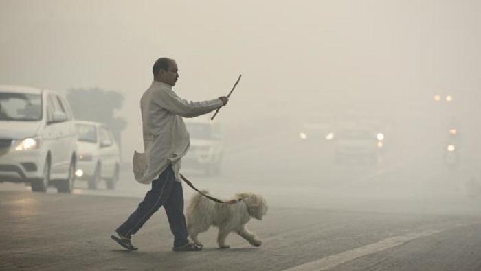 """India, smog mai così alto in 17 anni. Le istituzioni: """"Tenete i bambini in casa"""""""