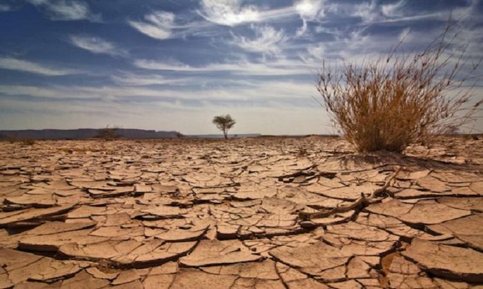 Clima, fino a 350 milioni di migranti ambientali entro 2050